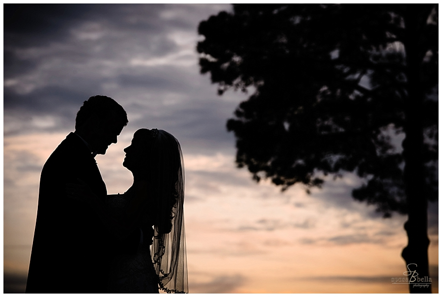 greenville sc wedding photographers photographer engagement portrait session_0708.jpg
