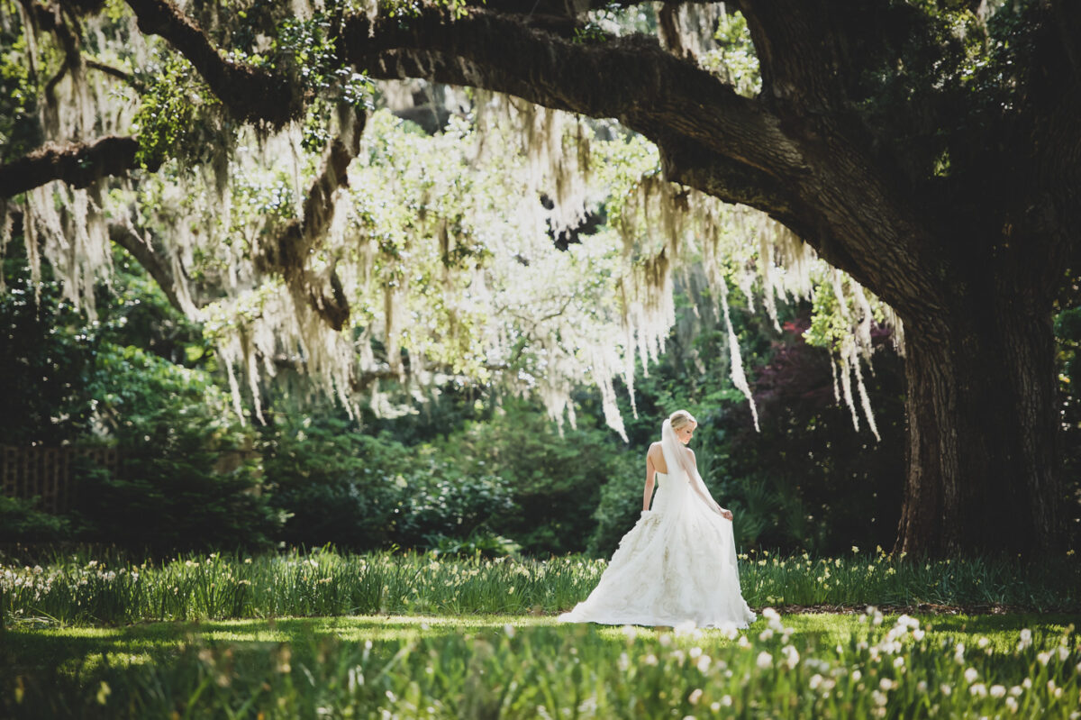 A bride stands under an oak tree draped with Spanish moss.