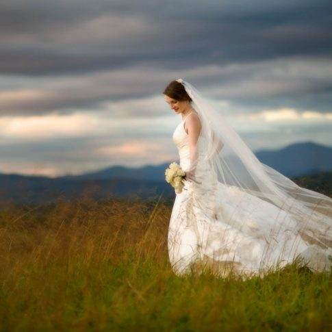 A bride is walks through a hayfield with the Blue Ridge Mountains in the background.