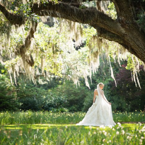 A bride poses under oak trees in a field of daffodils.