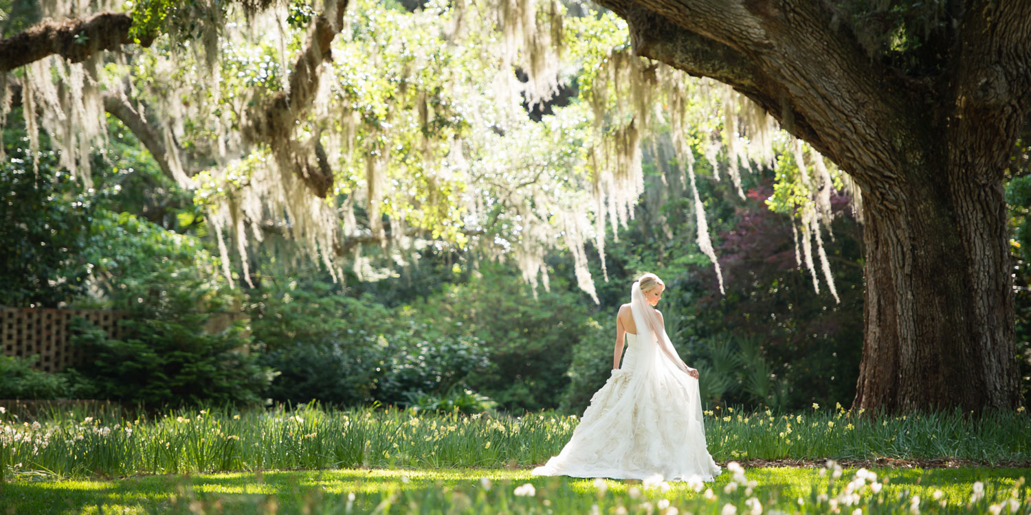 Brookgreen gardens holds a special place in our hearts. The gardens are incredibly stunning, the grounds with three hundred year old oak trees in the Live Oak Allee make a wonderful backdrop for a bridal portrait session, engagement session, or wedding. Just outside of Murrells Inlet, South Carolina, the 9100 acre gardens are a sight to behold. Although we are wedding photographers in Greenville SC, we traveled to the Lowcountry for Fran and David's nuptials, and a few days prior to the wedding we photographed her bridal portrait session in the same setting where she would later be married. The sun shined through the live oak trees draped with Spanish moss onto Fran, the bride, and the blooming daffodils. I just love her pose and the way she is playing with her veil. Her arm gently reaches down to her veil mimics the wind blowing the Spanish moss that above her head. The bride is a former ballet dancer, and it shows in the way she moves and carries herself. We rode on golf carts all around the property, but the Live Oak Allee was definitely our favorite location. Fran's wedding gown was a strapless Amsale ballgown with hand pleated silk taffeta on the dropped waist, and stunning flowers made from silk fabric on the skirt. It fit her like a glove, and you could tell that she felt like a princess wearing it!