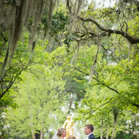 Standing under graceful Spanish moss, a bride and groom say their nuptial vows.