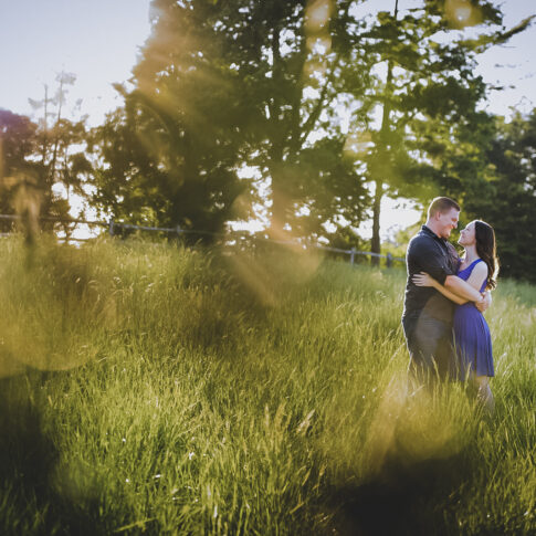 A engaged couple embraces in a grassy field as the warm sunlight beams into the lens of the camera.