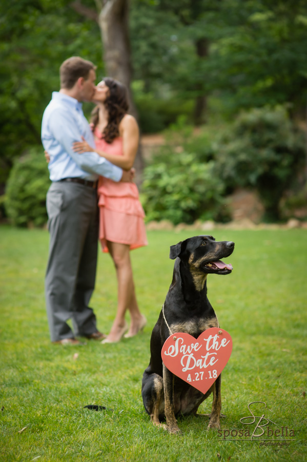 Fiancé's kiss in the background while the photo focuses on their dog with a sign announcing their wedding date.